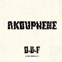 """Dubquake - Eu Obf Akouphene X Uk Dub 12"""" rv-12p-02814"""